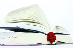 Het boek en nam toe Stock Foto