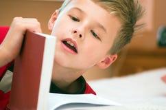Het boek van de lezing Stock Fotografie