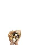 Het boeket kleurt handvruchten vegatables achtergrondbank Stock Fotografie