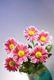 Het boeket van Chrysantemum in de glaskom royalty-vrije stock afbeeldingen