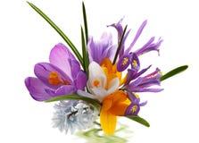 Het Boeket van de bloem royalty-vrije stock fotografie