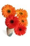 Het boeket van de bloemen van gerbera, mening van hierboven Stock Fotografie