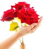 Het boeket van de de handholding van de vrouw van drie rode rozen Stock Foto's