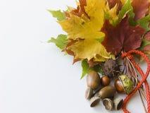 Het boeket van de herfst royalty-vrije stock afbeelding