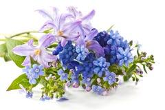 Het boeket van de lente stock afbeeldingen