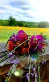 Het boeket van de lente royalty-vrije stock afbeeldingen