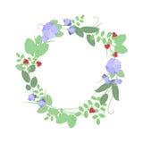 Het boeket van de zomer van bloemen Royalty-vrije Stock Afbeeldingen