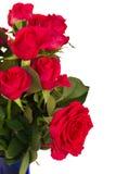 Het boeket van donkere roze rozen sluit omhoog Royalty-vrije Stock Foto