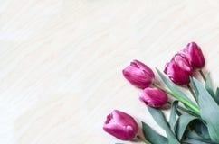 Het boeket van heldere roze tulpen legt schuin Stock Foto