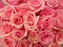 Het boeket van roze nam toe Stock Fotografie