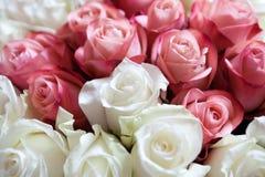 Het boeket van rozen Royalty-vrije Stock Foto's