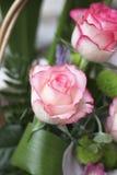 Het boeket van rozen Stock Foto