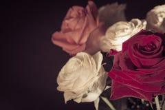 Het boeket van rozen sluit omhoog Stock Afbeeldingen