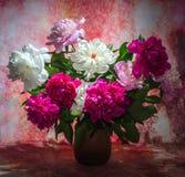 Het boeket van tien helder Bourgondië, schrijft binnen roze en witte pioenen in royalty-vrije stock afbeeldingen