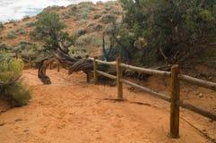 In het Bogen Nationale park, Utah Royalty-vrije Stock Foto