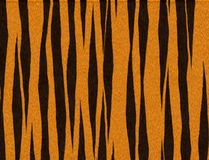 Het bont van de tijger stock illustratie