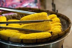 Het bordvol van vers zoet organisch graan stoomde klaar te eten Voorbereide gekookte suikermaïs op de lijst stock afbeelding