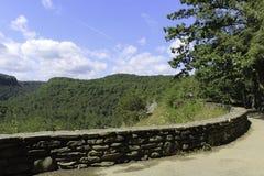 Het bos en de Rivier overzien mening Royalty-vrije Stock Afbeelding