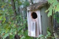 Het bos Huis van de Vogel Royalty-vrije Stock Afbeeldingen