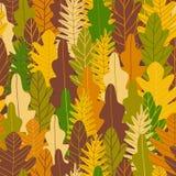 Het bos naadloze patroon van de herfst Vector illustratie Royalty-vrije Stock Afbeelding
