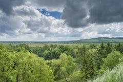 Het bos onder dark betrekt mening vanaf de bovenkant van de heuvel Stock Fotografie