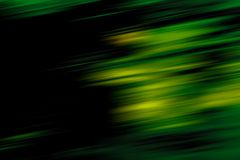 Het bos Onduidelijke beeld van de Motie Stock Foto