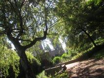 Het bos van Cardiff royalty-vrije stock fotografie