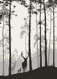 Het bos van de аpijnboom met een familie van herten en vogels vector illustratie
