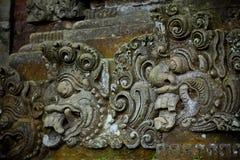 Het bos van de aap in Bali (Sangeh) Stock Foto