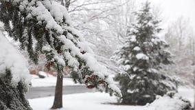 Het bos van de de hemelwolk van de sneeuwwinter stock videobeelden