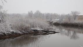 Het bos van de de hemelwolk van de sneeuwwinter stock video
