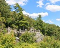 Het Bos van de de Rotsstaat van de kuiper Stock Foto