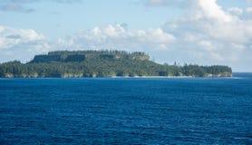 Het Bos van de eilandpijnboom: Nieuw-Caledonië Royalty-vrije Stock Foto's
