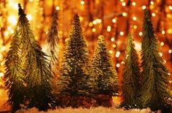 Het bos van de kerstboom Stock Foto