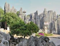 Het bos van de steen Stock Fotografie