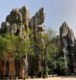 Het Bos van de Steen van China Stock Afbeelding