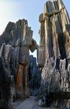 Het Bos van de Steen van China Royalty-vrije Stock Afbeeldingen