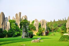 Het Bos van de Steen van Shilin Royalty-vrije Stock Foto's
