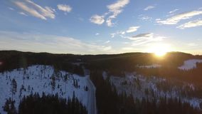 Het bos van de de wegwinter van de zonsopgangdageraad stock footage