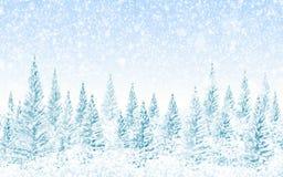 Het bos van de winterkerstmis Stock Foto