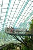 Het Bos van de wolk, Tuinen door de Baai Stock Foto's
