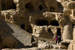 Het Bos van de Zhadagrond en Ruïnes van Guge-Koninkrijk stock foto's