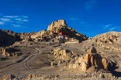 Het Bos van de Zhadagrond en Ruïnes van Guge-Koninkrijk royalty-vrije stock fotografie