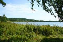 Het bos van het meer Royalty-vrije Stock Afbeeldingen