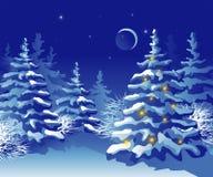 Het bos van Kerstmis van de winter bij nacht Stock Afbeelding