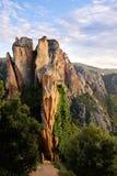 Het bos van Piana (Corsica) Stock Afbeeldingen