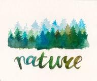 Het bos van pijnboomwaterccolor Vector Illustratie