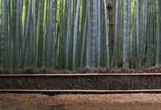 Het Bos van Straw Fence en van het Bamboe dichtbij Kyoto. Royalty-vrije Stock Afbeeldingen