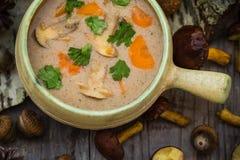 Het bos wilde de champignonsoep van maaltijdgiften uitstekende stileren Stock Fotografie