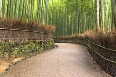 Het Bosje van het Arashiyamabamboe Stock Foto's